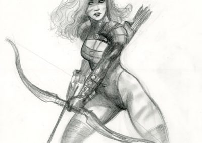 Archere-t2